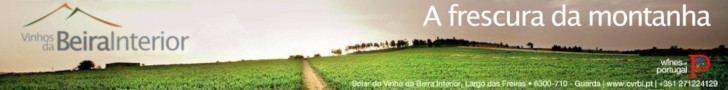 Vinhos Beira Interior